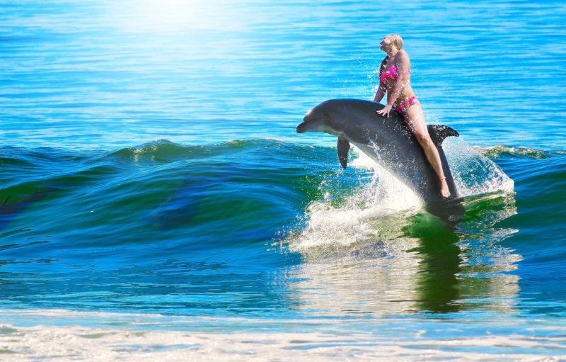 ragazza delfino