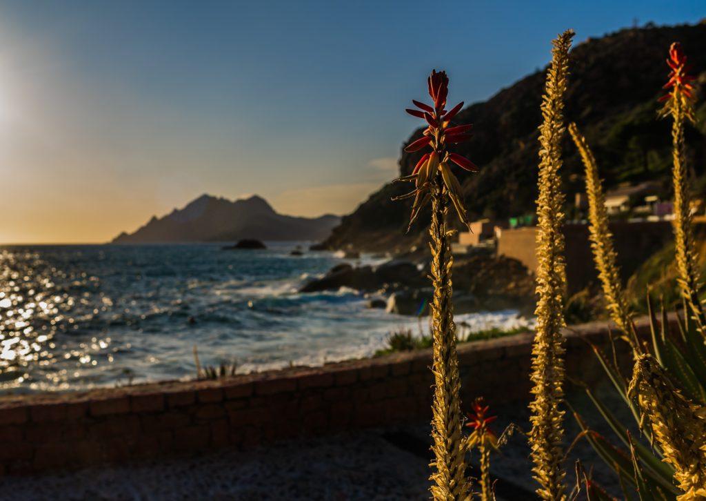 Corsica vela e trekking